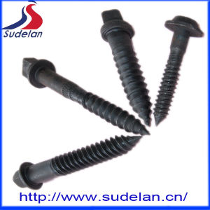 Area 15/16* 5 Carbon Steel Screw Square Head