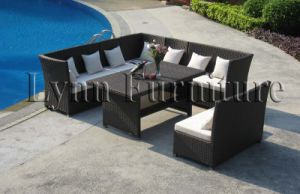 Garden Sofa Set (LN-061) pictures & photos