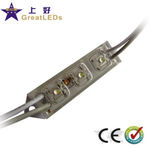 LED Module/Superflux LED Module (GFS48-3X)