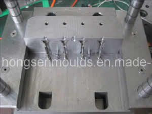 Plastic Injection Mould (changeable insert)