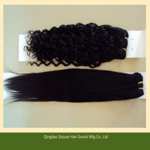 Free Hair Weave Samples Qingdao Hair (ZYWEFT-181) pictures & photos
