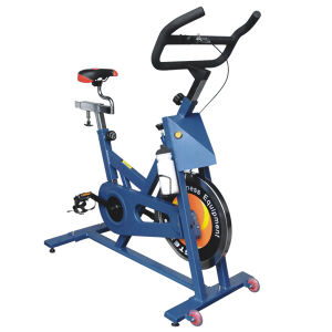 Exercise Bike (866)