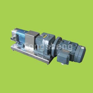 CE Rotary Lobe Pump (Gear Constant Speed Type)