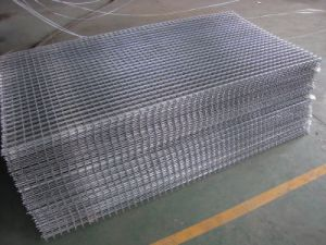 2.0mx5.0m Welded Wire Mesh Panel pictures & photos