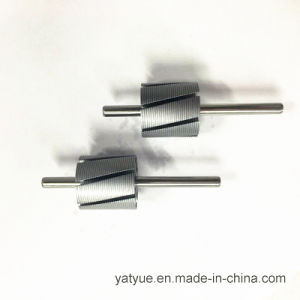 Micro Motor Parts Rotor 24X7p pictures & photos