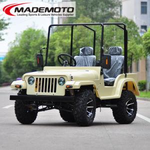 Adult Jeep 150cc 200cc Cheap for Sale pictures & photos
