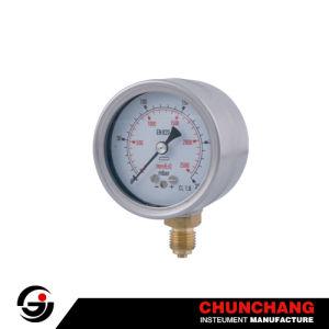 Capsule Low Pressure Gauge pictures & photos