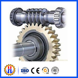 Worm Wheel and Worm for Gjj Hoist, 48teeth and 32teeth pictures & photos