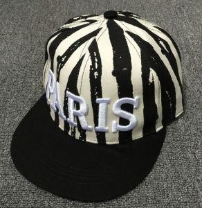 Fashionable Hip Hop Baseball Cap pictures & photos