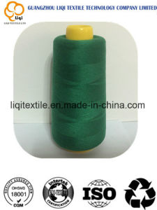 150d/2 120d/2 100% Rayon 100% Polyester Embroidery Thread pictures & photos