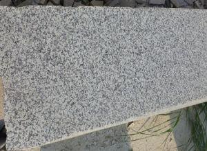 Grey Sardo Granite G439 Granite Tile Granite Slab pictures & photos