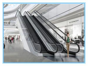 Outdoor Indoor Heavy-Duty Public Transport Escalator pictures & photos