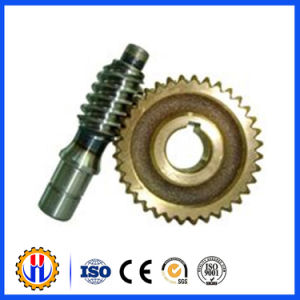 Worm and Worm Wheel Manufacturer pictures & photos