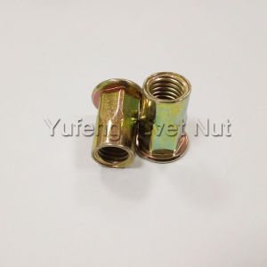 Yellow Zinc Plating Flat Head Rivet Nut with Half Hexagon Body pictures & photos