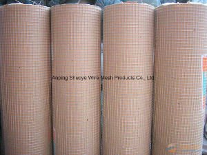 Galvanized Steel Welded Wire Mesh with PVC Coating pictures & photos