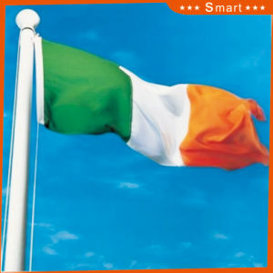 Custom Waterproof and Sunproof National Flag Ireland National Flag Model No.: NF-051 pictures & photos