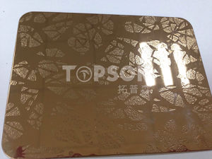 201 304 316 Metal Sheet Stainless Steel Plate with Embossed Colored for Decoration