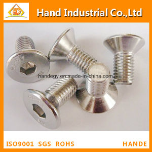 "Top Quality Ss 316 1/2"" Hex Socket Flat Head Screw pictures & photos"