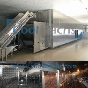 Fluidized IQF Freezer for Vegetables and Fruits Seafood pictures & photos