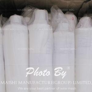 Filter Mesh/Screen Mesh/Nylon Flour Mesh pictures & photos