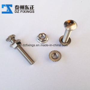 Stainless Steel Carriage Bolt (DIN603) pictures & photos