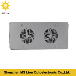 Two Switches 300W LED Grow Light for Veg Bloom pictures & photos