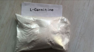 Body Shaping 99.5% Purity L (-) -Carnitine Fat Loss Steroids Muscle Enhancement Supplements 541-15-1 pictures & photos