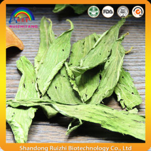 Dried Stevia Leaves Tea pictures & photos