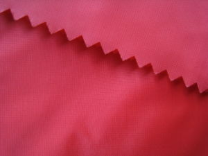0.08 Ripstop Polyester Taffeta Fabric for Down Jackets pictures & photos