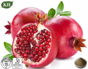 High Natural Pomegranate Peel Extract 30%, 40% Ellagic Acid pictures & photos