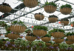 Cheapest European Style Metal Wire Flowers Outdoor Wall-Mounted Hanging Basket pictures & photos
