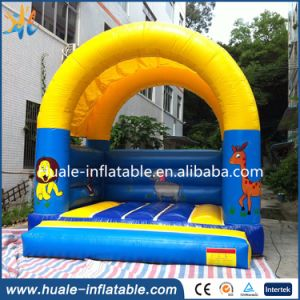 Different Kinds of Children Jumping Inflatable Bouncer with Slide pictures & photos