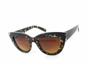 Eyecat Frame Fully Plastic Sunglasses Kp60392 Unisex Fashionable Muti-Coloured pictures & photos