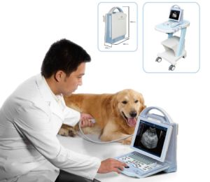 Doppler Ultrasound System for Veterinary with Large LED