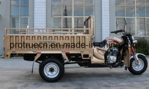 Three Wheel Motorcycle for Shippments pictures & photos