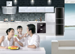 Powder Coating for Household Appliances pictures & photos
