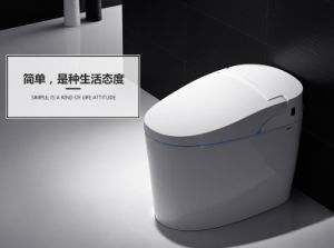 China Factory Direct Sale White Color Smart Toilet for Euro Market (BC-211) pictures & photos