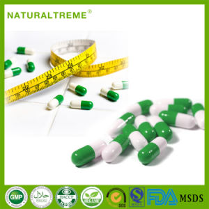 100% Natural Herbal Slimming Capsule with Factory Price