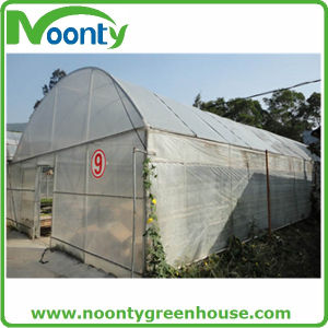 Economical Tunnel Single Plastic Film Green House pictures & photos