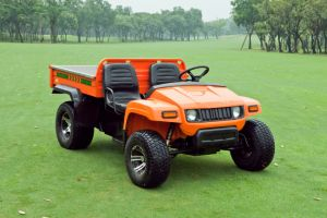 Electric 2 Seater Golf Car pictures & photos