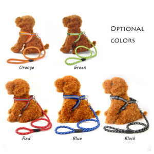 Reflective Dog Leads Nylon Pet Harness with Leash pictures & photos