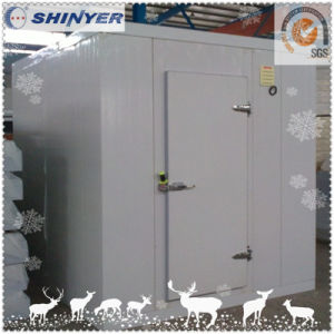 Shinyer Cold Room / Cold Storage / Blast Freezer pictures & photos