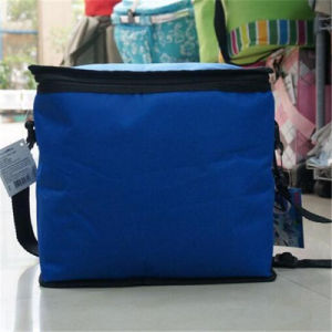 Factory Specializing in The Production of Ice Bag, Cooler Bag, Lunch Bag (GB#357) pictures & photos
