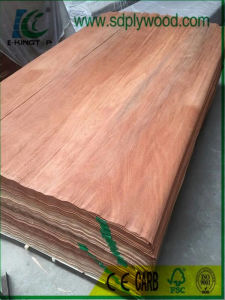 Rotary Cut Plb Veneer for India Market Used for Plywood Production pictures & photos
