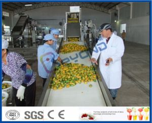 mango pulp processing line pictures & photos