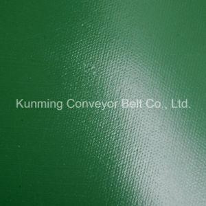 Conveyor Belt PVC Logistics Light Industry (EM120/2: 0+1.0/3.0AG/AS) pictures & photos