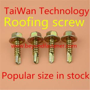 Self Drilling Screw Tek Screw Roofing Screw pictures & photos