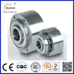 Riz One Way Clutch Bearing Overrunning Clutch (Sprag clutch) pictures & photos
