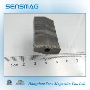 Manufacture High Quality Permanent AlNiCo Magnet for Motor pictures & photos