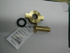 Brass Nut for Compression Fitting with Washer pictures & photos